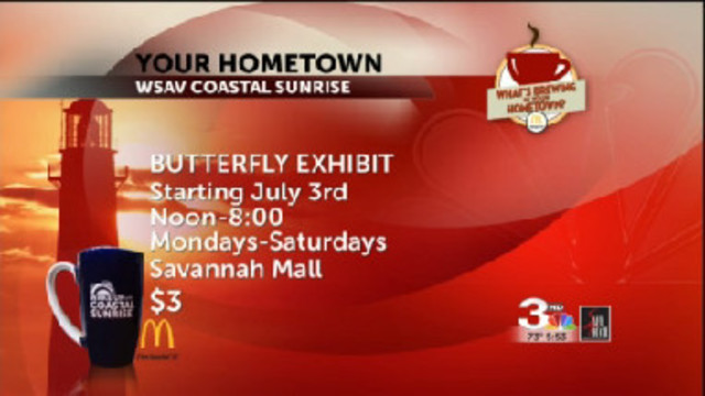 Our Hometown: Butterfly Exhibit