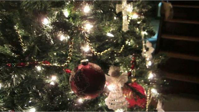 Safety Officials Don T Let Christmas Tree Become Fire Hazard