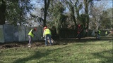 Effort to mitigate flooding includes grant program to plant more trees