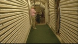 One Lowcountry man's home has become a golf ball showroom