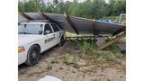 Take a look: Storm damage in the Coastal Empire and Lowcountry